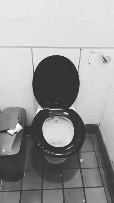 Knaresborough Castle Toilets